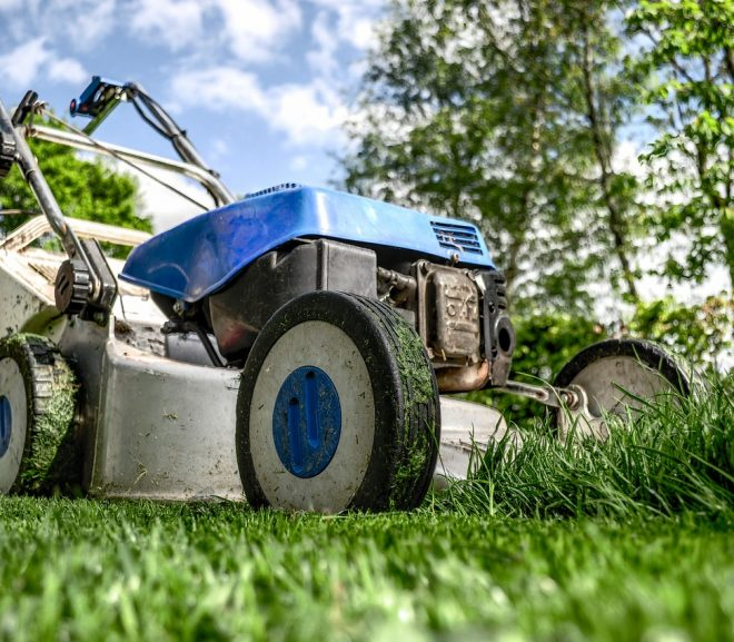 Pourquoi confier l'entretien de son jardin à un professionnel ?